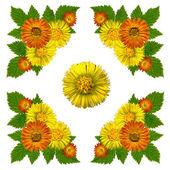 YellowBlossomsNapkinWhite1 — Stock Photo
