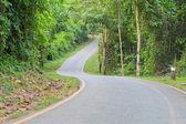 Eğri yol — Stok fotoğraf