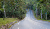 Empty curve road in the forest — Stock Photo