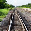 Separated Railway Track — Stock Photo