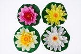 Four Artificial Lotus on a White Background — Stock Photo