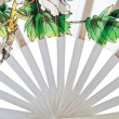 Close up oriental white chinese fan — Stock Photo #19706663