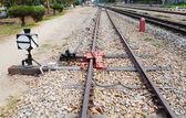 Interruptor y ensambladura ferroviaria — Foto de Stock