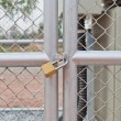 Chain link fence and metal door with lock - Stock Photo