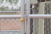 Chain link fence and metal door with lock — 图库照片