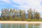 Beach and blue sky — Stockfoto