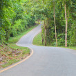 Stock Photo: Curve Road