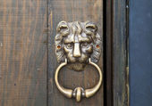 "Bronze door knob ""Lion head"" — Foto de Stock"
