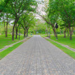Green alley,path in the park — Stock Photo