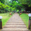 Stone path in outdoor park — Stock fotografie