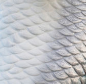 Fish scale wall texture background — Stock Photo