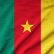 Ruffled Cameroon Flag — Stock Photo