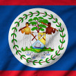 Ruffled Belize Flag — Stock Photo #34206909