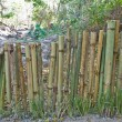 Bamboo fence — Stock Photo #38545385