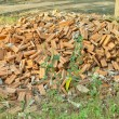 Pile of Discarded Bricks — Stock Photo