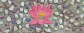 Lotus painting on stone wall decoration — 图库照片