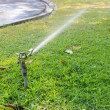 Water sprinkler in outdoor park — Stock Photo