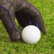 Golfer pick up golf ball on grass — Stock Photo #41592619