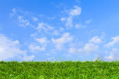 Artificial grass under blue sky — Stock Photo