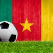 ballon de football sur herbe avec fond de drapeau Cameroun — Photo #42307673