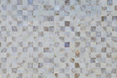 Oyster shell textured mosaic tiles in neutral color — Stock Photo