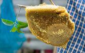 Honeycomb closeup — Stockfoto