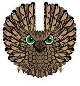 Nocturnal birds of prey. Owl. — Stock Vector