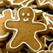 Gingerbread cookie — Lizenzfreies Foto