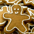 Foto Stock: Gingerbread cookie
