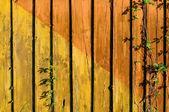 Aged plank — Stock Photo