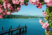 Jezioro woerther — Zdjęcie stockowe