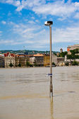 Flood of the Danube — Stock Photo