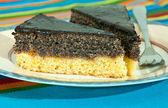 Poppy seed cake — Stock Photo