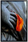 In mano un fiore — Stock Photo