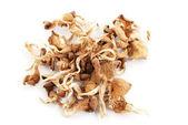 Dried porcini mushrooms isolated on white background — Stock Photo