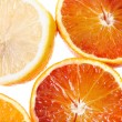 Biopsy of the orange — Stock Photo