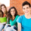 Young group of students in campus — Stock Photo #28212659