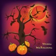 Halloween-Hintergrund, Vektor-illustration — Stockvektor  #13523866