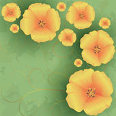 Vintage floral background with flowers poppies — Stock Vector