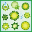 Set of decorative elements for eco design — Stock Vector