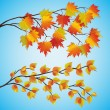 Royalty-Free Stock Vector Image: Set of autumn tree