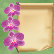 Vintage background with flower orchid and paper — Stock Vector