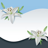 Greeting or invitation card with 3d flower lily — Stock Vector