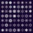 Big set of white snowflakes isolated — Stock Vector