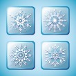 Set of winter icons with snowflakes — Stock Vector