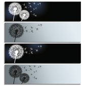 Set of horizontal banners with black and white dandelions — Stock Vector