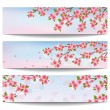 Set of beautiful banners with pink sakura cherry tree — Stock Vector #50601453