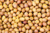 Fresh shiny green olives closeup macro — Stock Photo