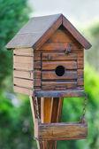 Little bird house at the garden — Stock Photo