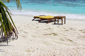 Beach chairs in white sand in front of blue ocean — Stock Photo